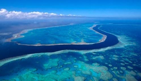 Resif-kıyı