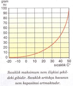 maksimum-nem