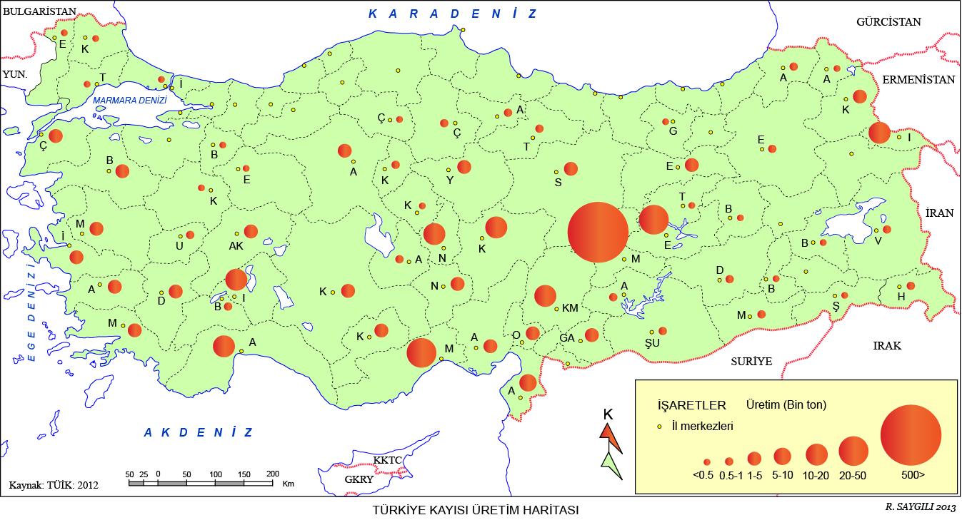 Türkiye Kayısı Üretim Haritası
