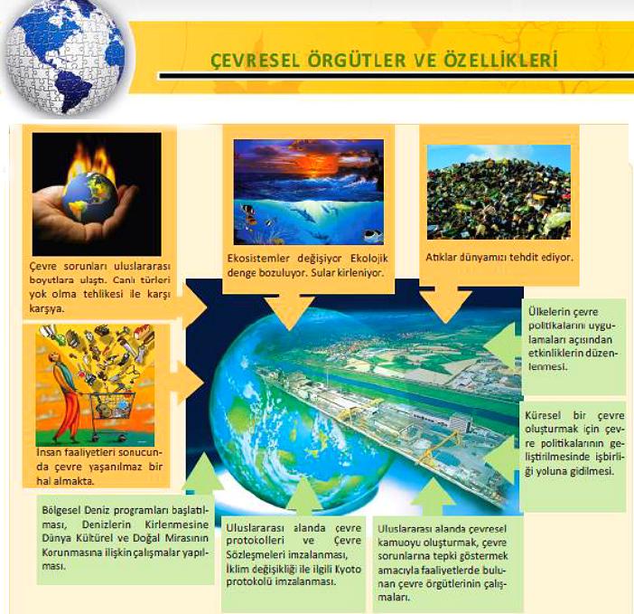 Çevresel Örgütler