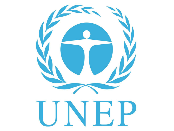BİRLEŞMİŞ MİLLETLER ÇEVRE PROGRAMI (UNEP)