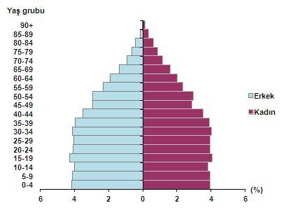 2015 yılı Nüfus Piramidi
