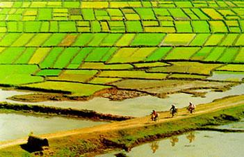 Verimli tarım alanları Nüfus