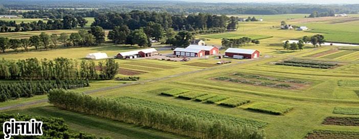 Köyaltı Yerleşmeleri Çiftlik