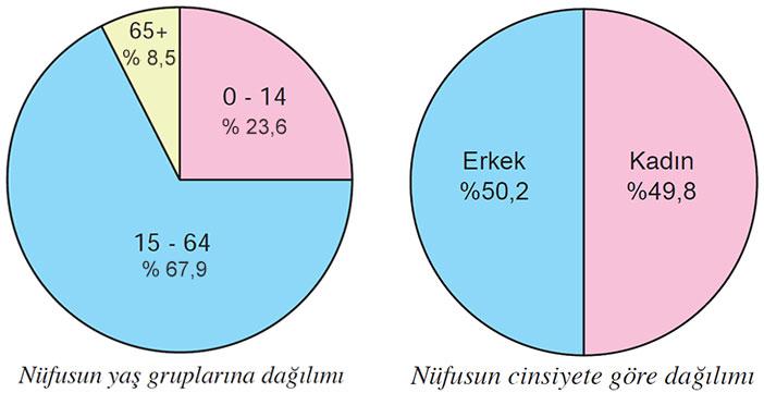 Türkiye'nin nüfus verileri 2017