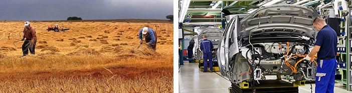 Gelişmiş ülkelerde Ekonomik Faaliyetler değişir