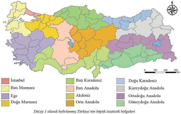 Türkiye'nin büyük istatistik bölgeleri haritası