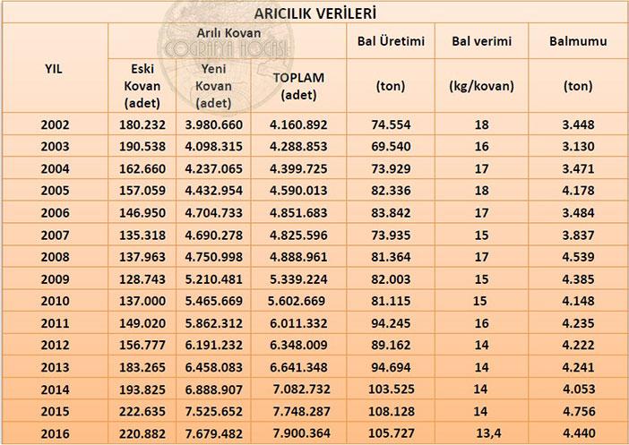 Türkiye'deki Arıcılık İstatistikleri