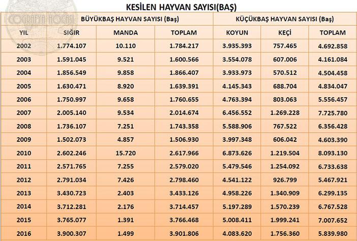 Türkiye'deki Kesilen Hayvan Sayısı İstatistikleri
