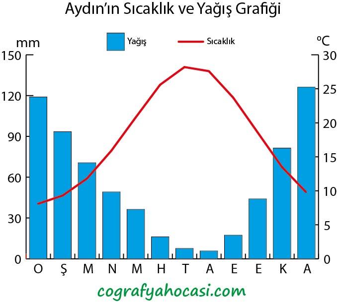 Aydın'ın Sıcaklık ve Yağış Grafiği
