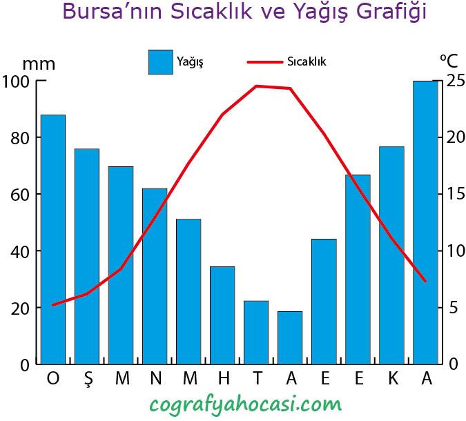 Bursa'nın Sıcaklık ve Yağış Grafiği