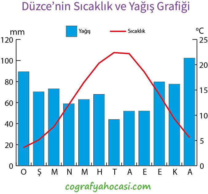 Düzce'nin Sıcaklık ve Yağış Grafiği