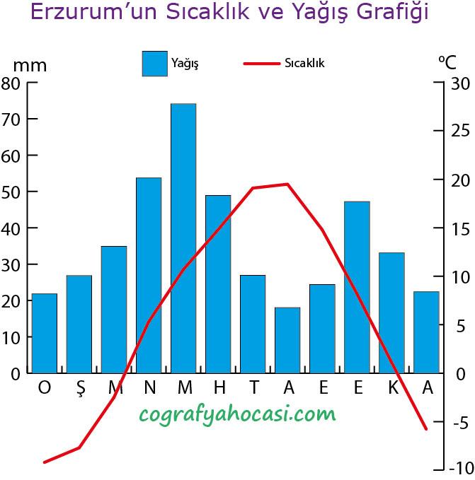 Erzurum'un Sıcaklık ve Yağış Grafiği