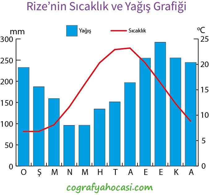 Rize'nin Sıcaklık ve Yağış Grafiği