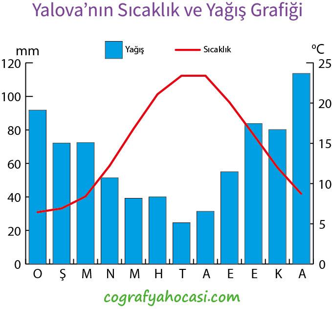 Yalova'nın Sıcaklık ve Yağış Grafiği