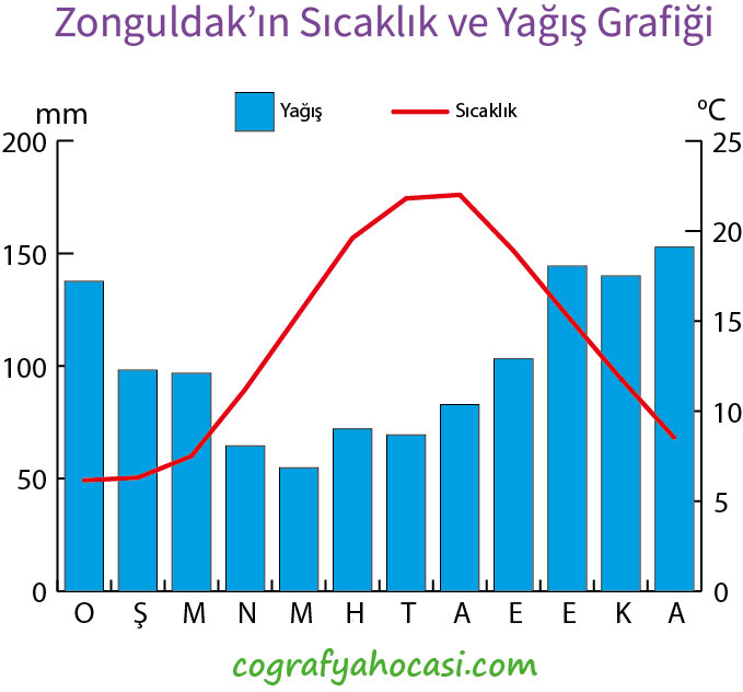 Zonguldak'ın Sıcaklık ve Yağış Grafiği