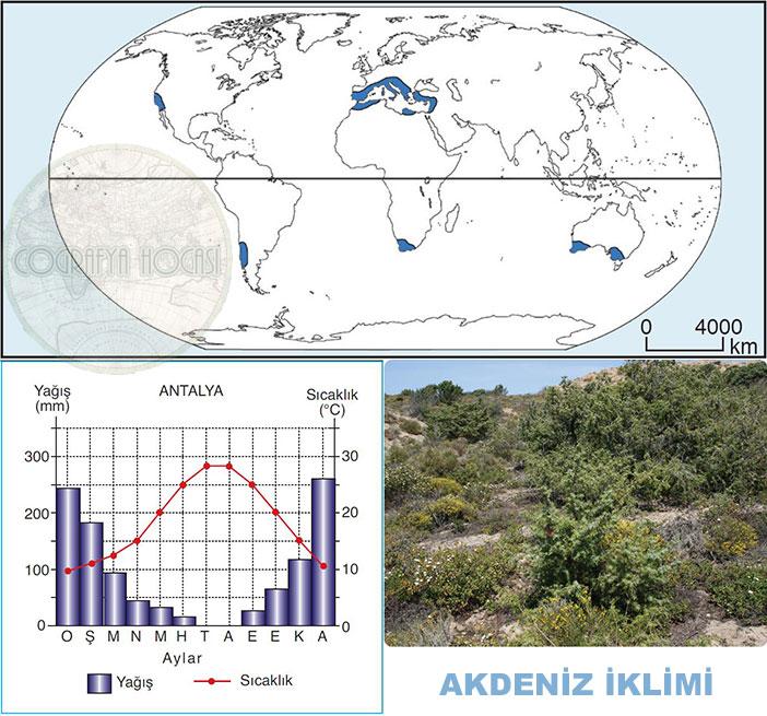 Akdeniz İklimi