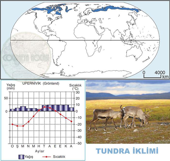 Tundra İklimi