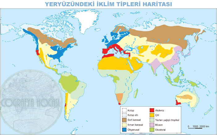 Yeryüzündeki Başlıca İklim Tipleri Haritası