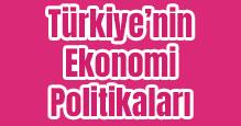 Türkiye'nin Ekonomi Politikaları Slayt