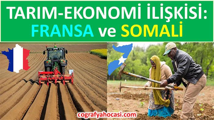 Farklı Ülkelerde Tarım Ekonomi İlişkisi Slayt
