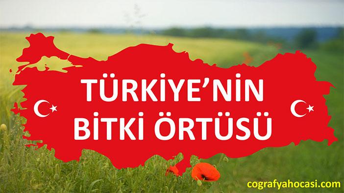 Türkiye'nin Bitki Örtüsü slayt