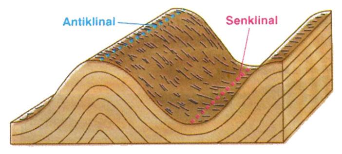 Antiklinal ve Senklinal nedir
