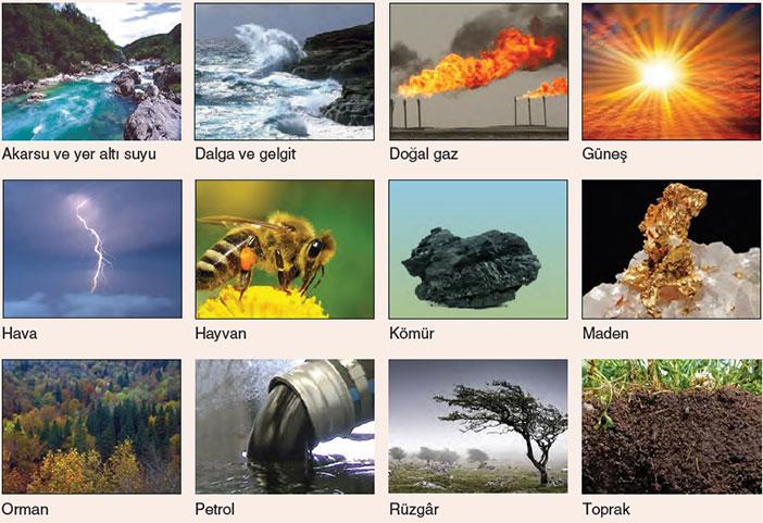 Doğal Kaynak nedir?