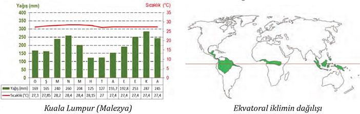 Ekvatoral İklim nedir
