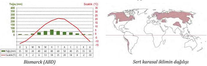 Sert Karasal İklim grafiği