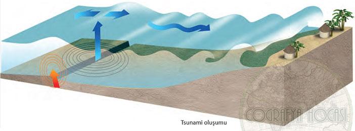 Tsunami nedir