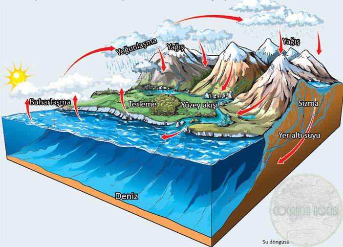 Yeryüzündeki Su döngüsü