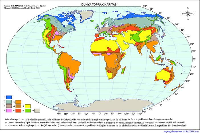 Dünya Toprak Haritası