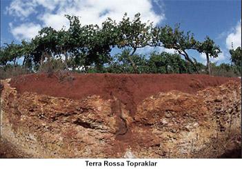 Terra Rossa Topraklar
