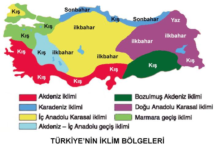 Türkiye'nin iklim Bölgeleri Haritası