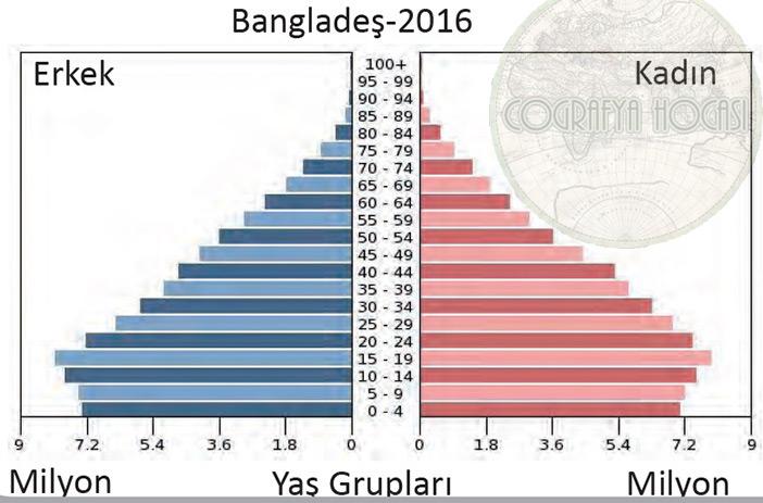 Bangladeş Nüfus Piramidi 2016