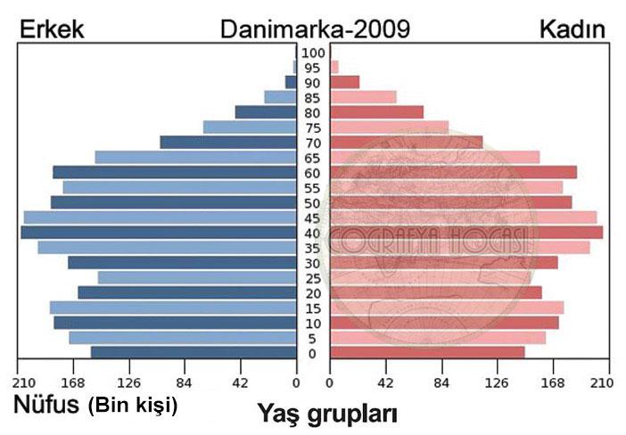 Danimarka Nüfus Piramidi 2009