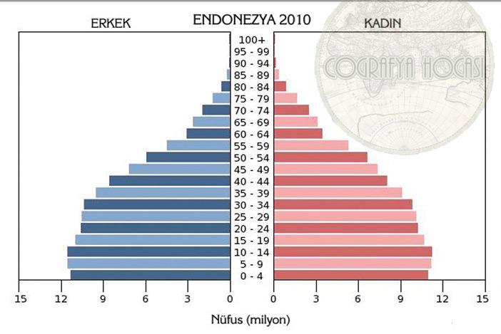 Endonezya Nüfus Piramidi 2010
