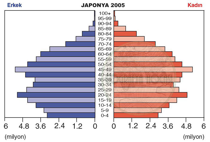 Japonya Nüfus Piramidi 2005