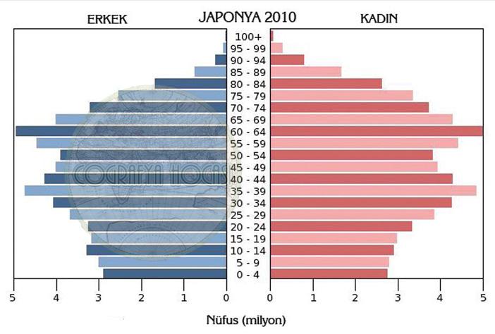 Japonya Nüfus Piramidi 2010