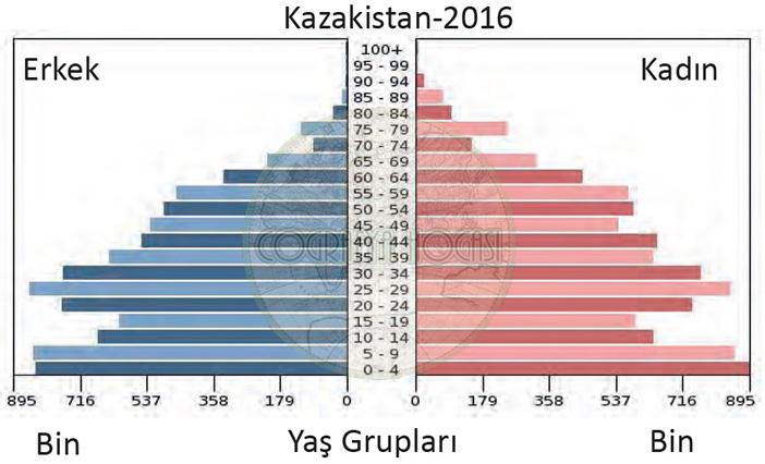 Kazakistan Nüfus Piramidi 2016