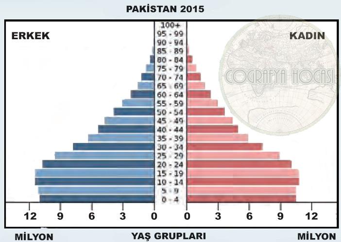 Pakistan Nüfus Piramidi 2015