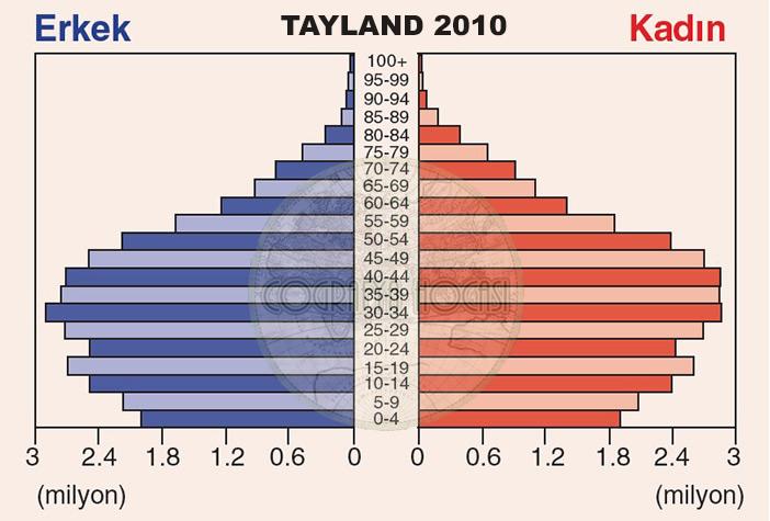 Tayland Nüfus Piramidi 2010