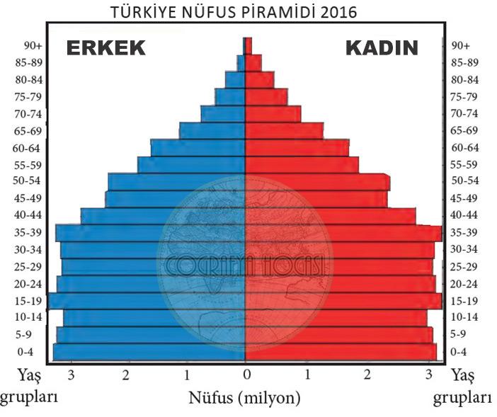 Türkiye Nüfus Piramidi 2016
