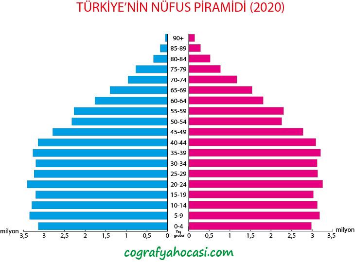 Türkiye'nin Nüfus Piramidi (2020)