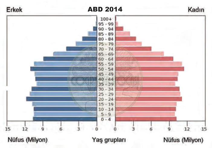 ABD Nüfus Piramidi 2014