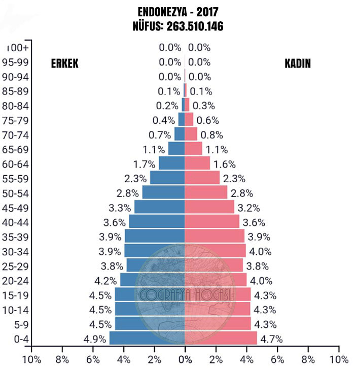 Endonezya Nüfus Piramidi 2017