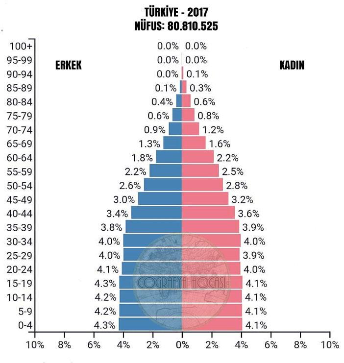 Türkiye Nüfus Piramidi 2017