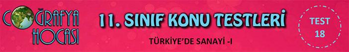 Türkiye'de Sanayi Testi