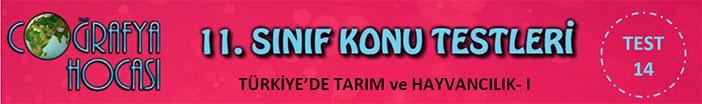 Türkiye'de Tarım ve Hayvancılık Testi